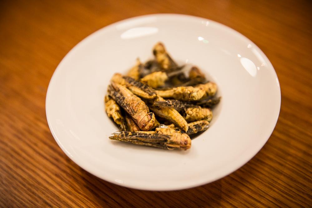 Criquets cuisinés par Jimini's lors d'un rendez-vous Les Heures Magiques de Google.